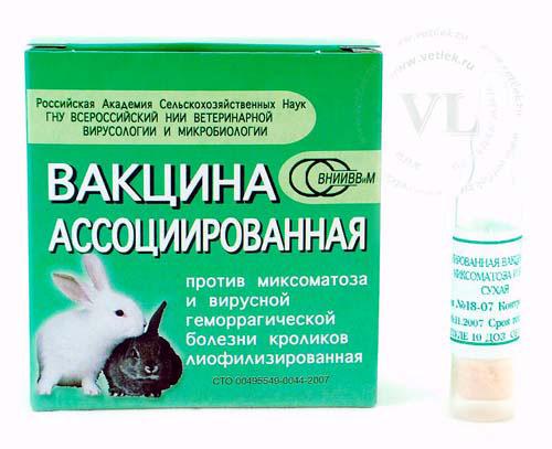 Геморрагическая Вакцина Для Кроликов Инструкция - фото 5